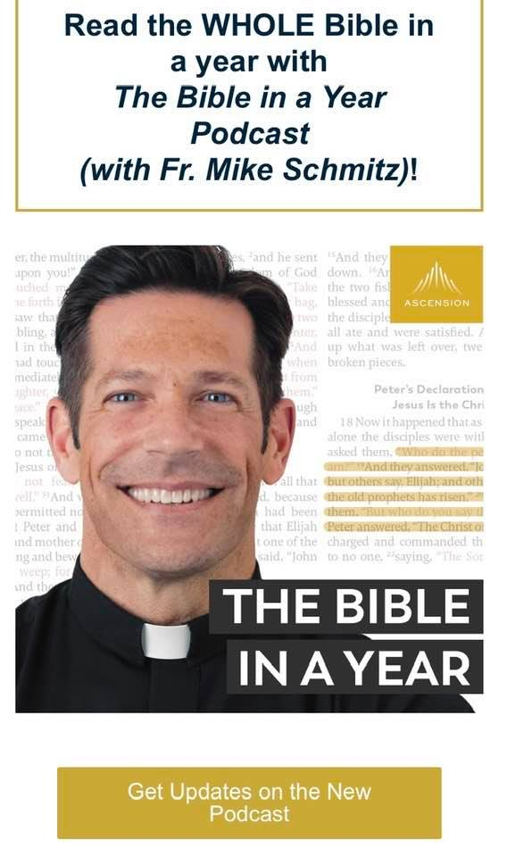 Bible in a Year with Fr. Mike Schmitz